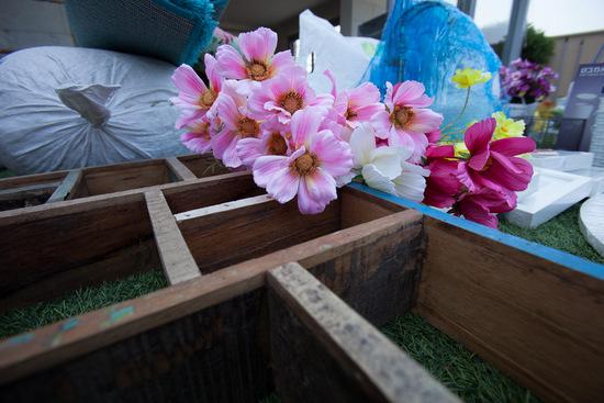 פרחים בקנה