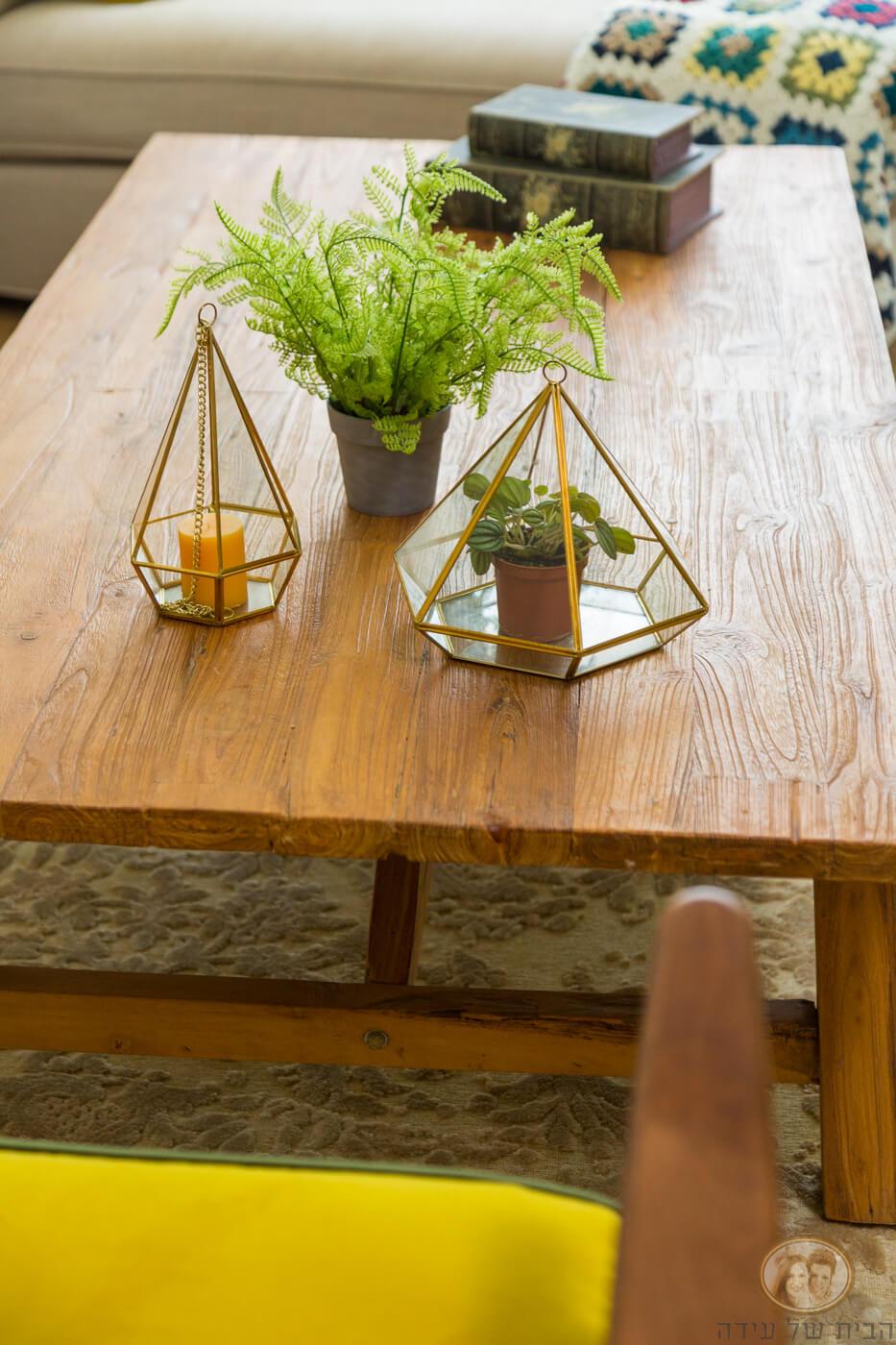 צמחיה מלאכותית בדירה