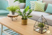 אקססוריז שולחן סלון